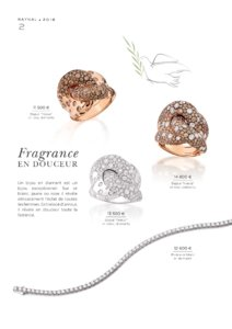 Catalogue Raynal France 2016 page 4