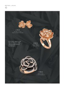 Catalogue Raynal France 2016 page 8